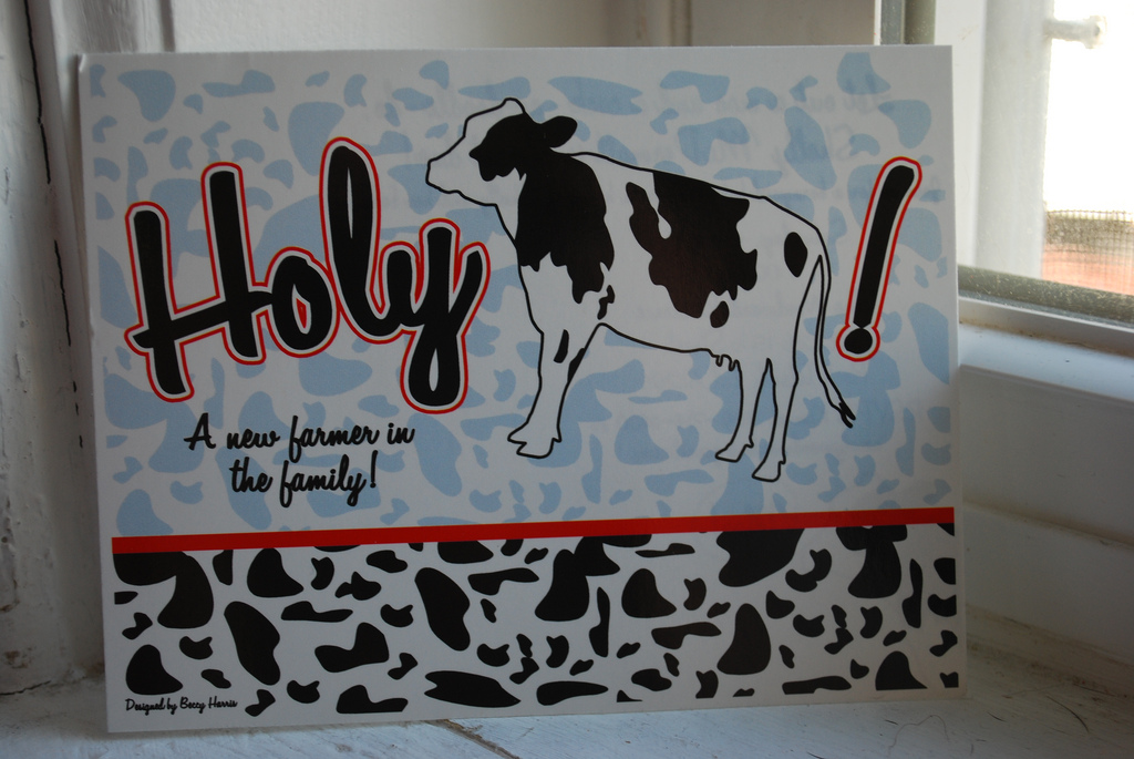 Quot Holy Cow Quot A Barnyard Baby Shower Newlywoodwards