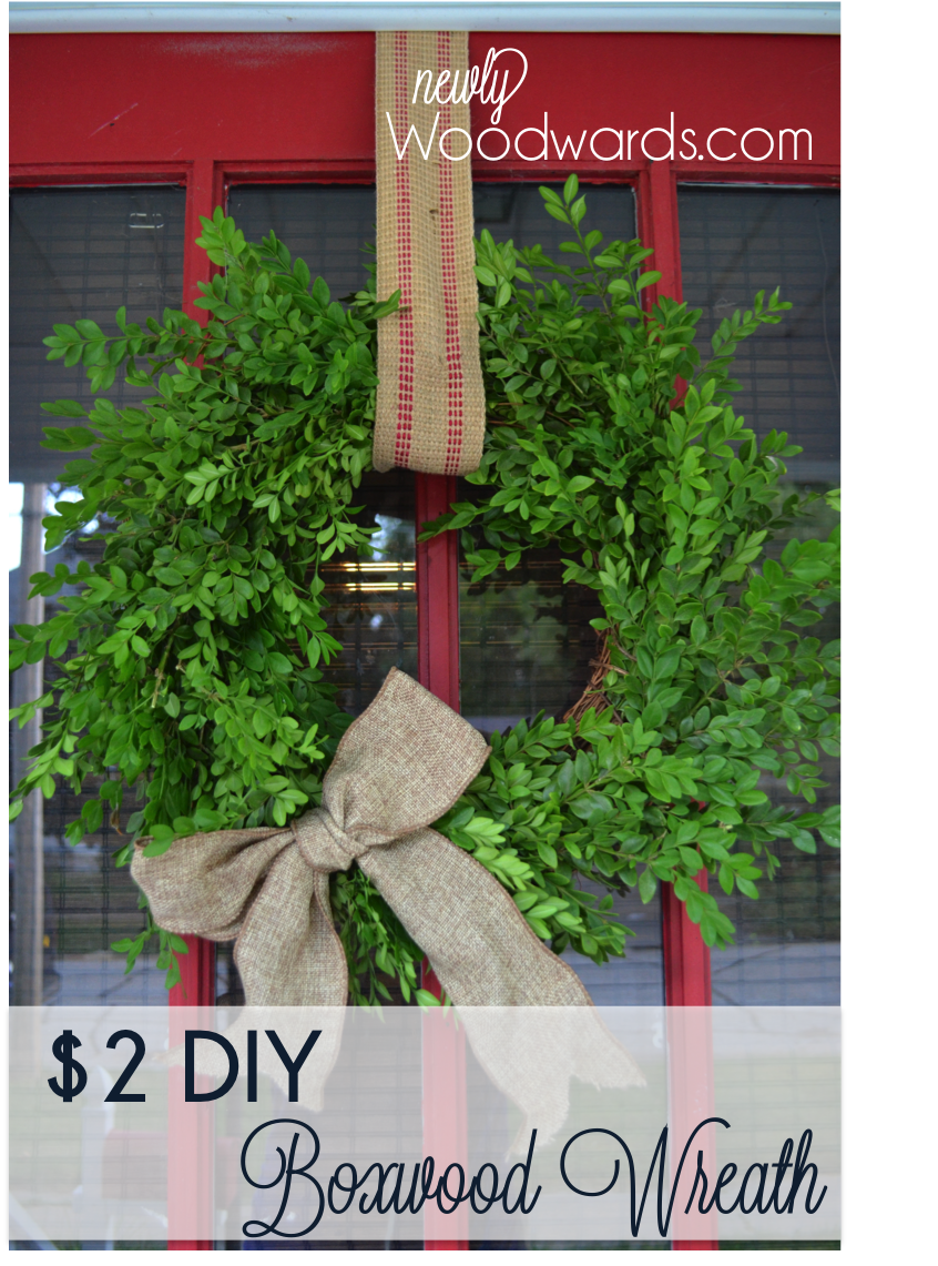 DIY boxwood