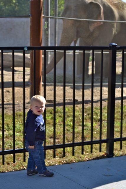 Zoo September02