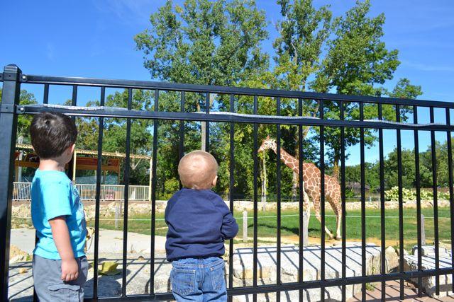 Zoo September07