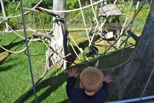 Zoo September08