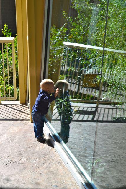 Zoo September11
