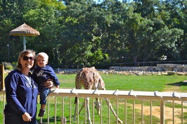 Zoo September12