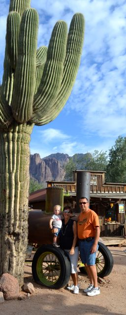 Arizona 2013016