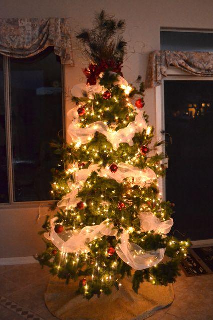 Arizona Christmas Decor01