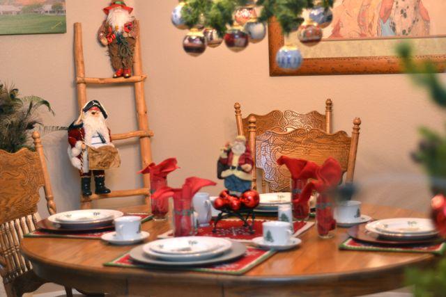 Arizona Christmas Decor05