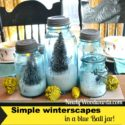 blue-ball-jar-winterscapes