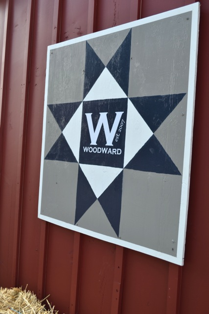 How To Make A Diy Barn Quilt Newlywoodwards