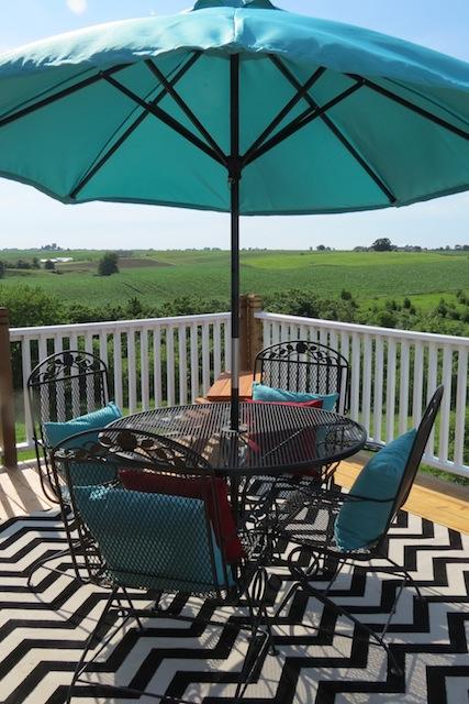 Mohawk rug chevron patio05