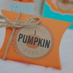 Aqua and orange fall baby shower8