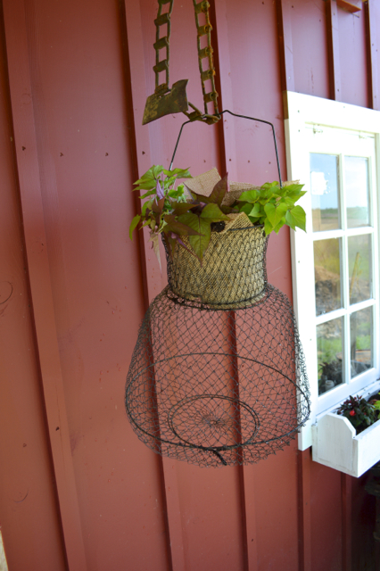 make a fish basket hanging planter1