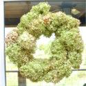 diy-hydrangea-wreath4