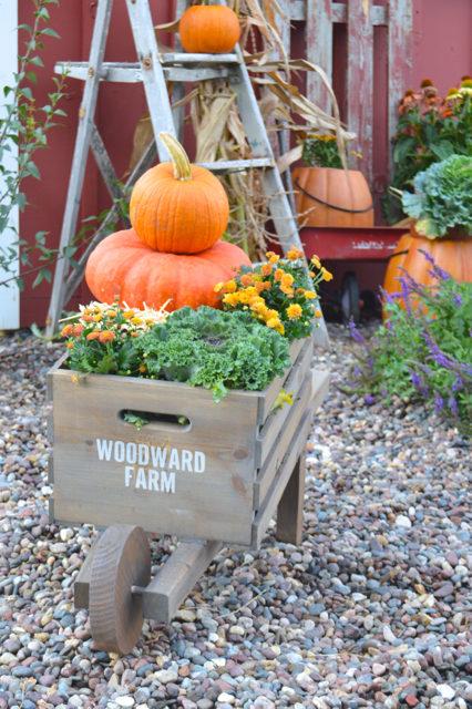 rustic-wheelbarrow-outside-for-plants1