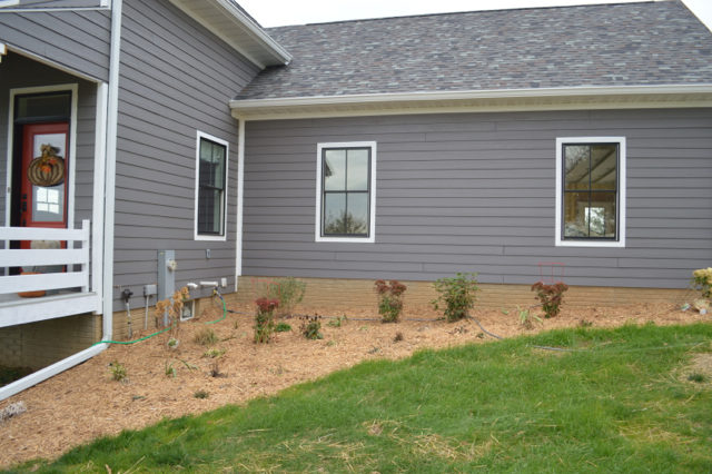 landscaping-on-a-budget1